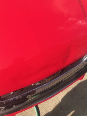 tampa dent removal before